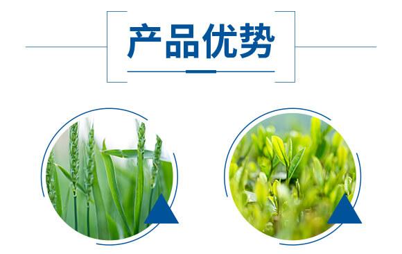酶解鱼蛋白溶浆(瓶)-优米卡-爵利_05