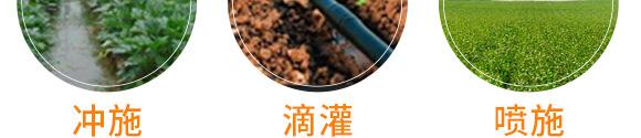 大量元素水溶肥-���W生物_10
