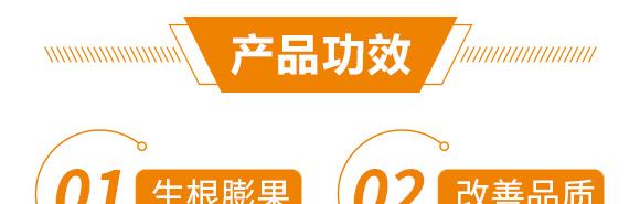 高产绿满天-郭师傅-立信生物_06