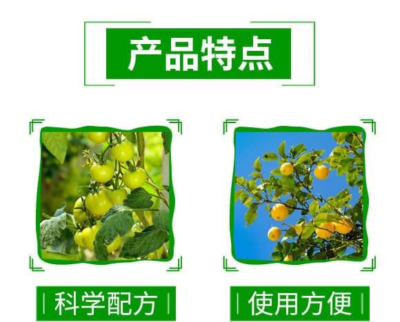 60%苯甲・醚菌酯-靓秀-神龙农业_04