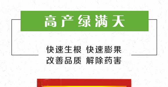 高产绿满天-郭师傅-立信生物_01