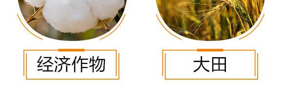 黄腐酸钾-沃福邦-沃神生物_10