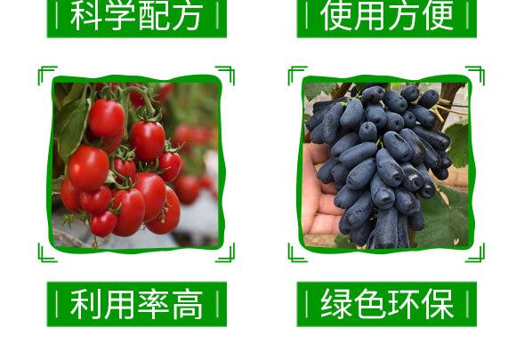 20%金蓟马-神龙农业_05