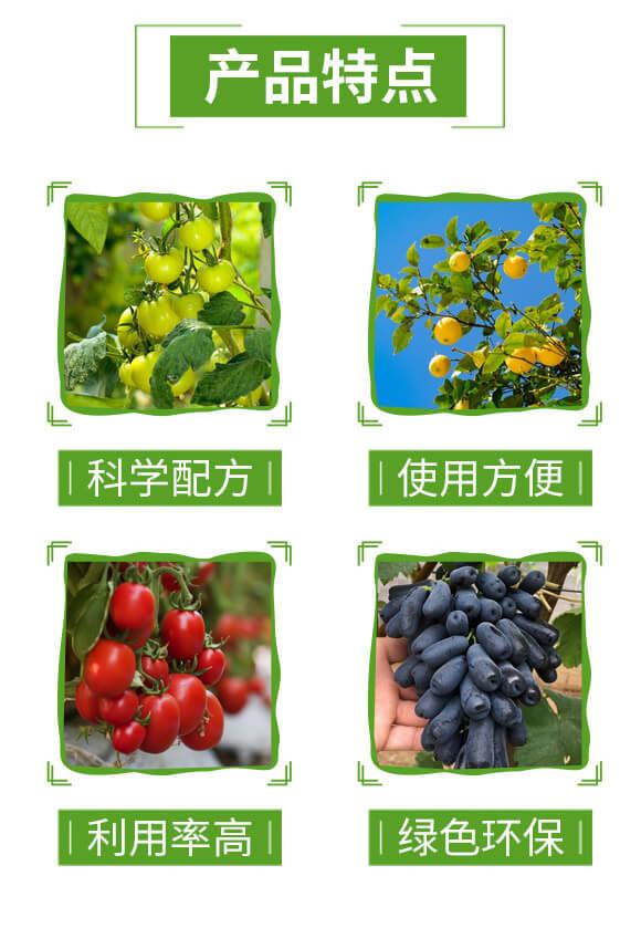 黄腐酸钾肥料18-5-25-摩天盛迪_03