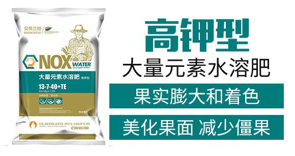 高钾型大量元素水溶肥13-7-40+TE-贝蒂兰特_03