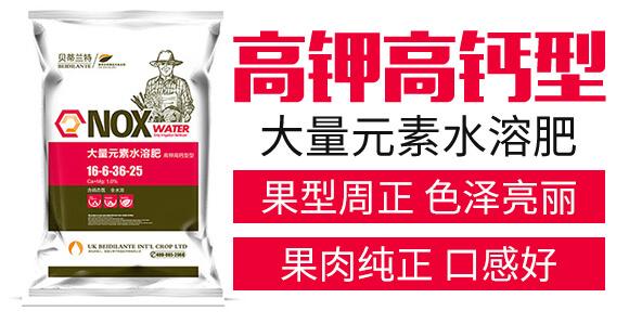 高钾高钙型大量元素水溶肥16-6-36-25-贝蒂兰特_03