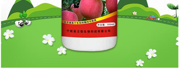 高产绿满天-郭师傅-立信生物_03