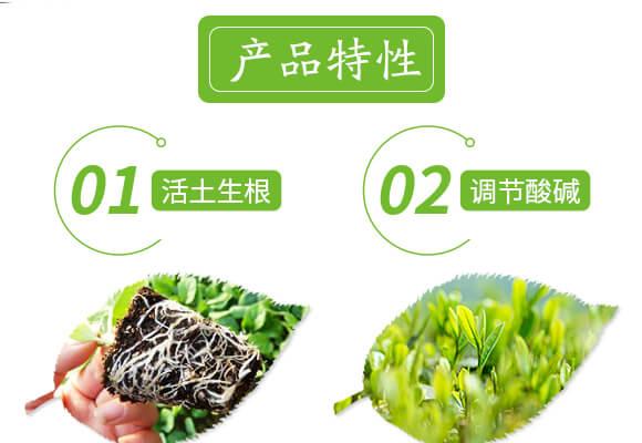 土壤修复剂-修田-爱农斯达_04