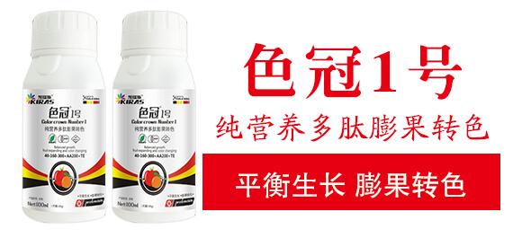 纯营养多肽膨果转色-色冠1号-凯瑞斯_03