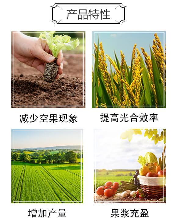 灌浆鼓粒营养剂-粒多金-汉翔生物_03