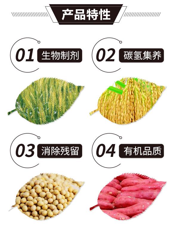碳氢核肥-金藻门-碳氢国际_02