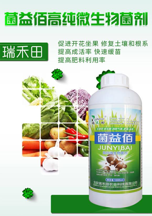 菌益佰高纯微生物菌剂-瑞禾田_01