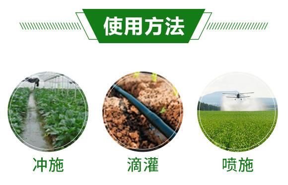 微生物菌剂-活菌传奇-瑞禾田_05