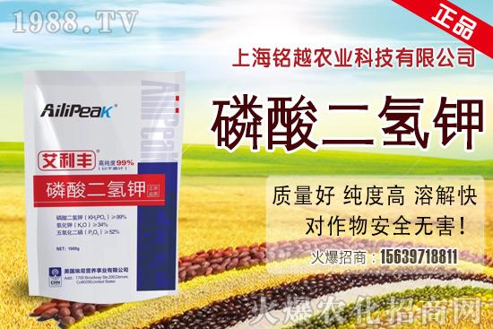 水稻赤枯病一旦发生,减产严重!稻农如何防治水稻赤枯病发生?
