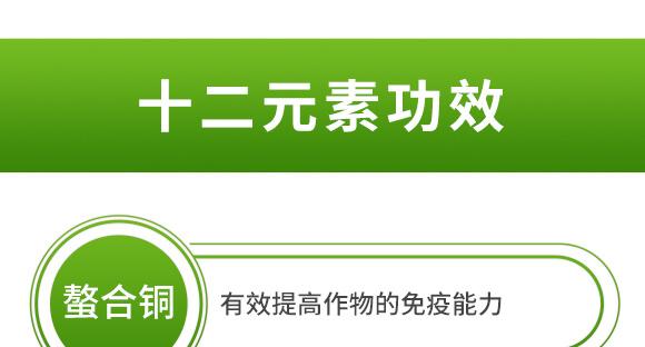 海藻十二元素-邦扶民-英爾果_07