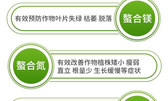 海藻十二元素-邦扶民-英爾果_11