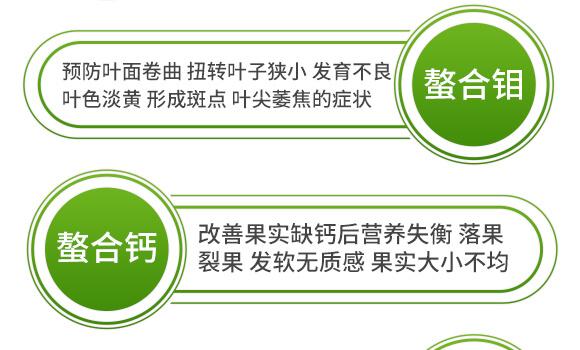 海藻十二元素-邦扶民-英爾果_10