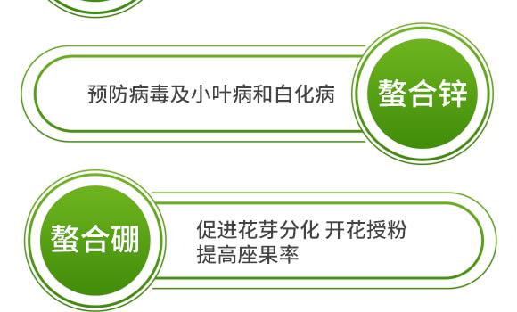 海藻十二元素-邦扶民-英爾果_09