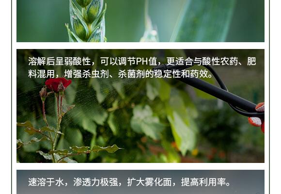 中量元素水溶肥料-糖醇鈣鎂-英爾果_06