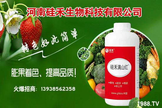 河南硅禾生物科技有限公司