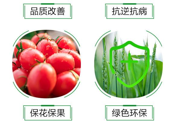 1000ml氨基酸中药肥-溃立克-红乐_06