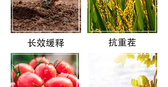 �V化增效肥-���W生物_05