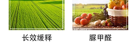 脲甲醛緩釋肥18-10-16+TE-丸聚-康恩特_06