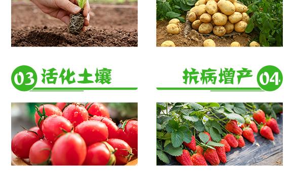 大量元素水溶肥料12-5-43+TE-阿特雷-沃克农业_05