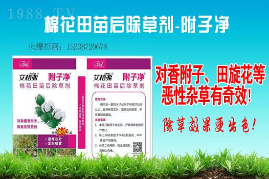 2021-1-29大豆除草剂价格行情