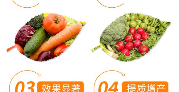 鱼蛋白生物肥-秀菌龙-新丰田_06