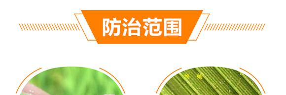 植物生命精华液-金泰亨_09