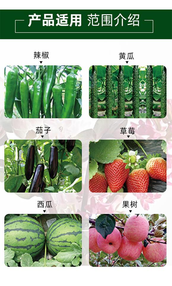 純營養生長平衡劑-喜妞-佳田生物_05