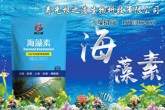 海藻素具体功效有哪些?海藻素在农业种植中的应用!
