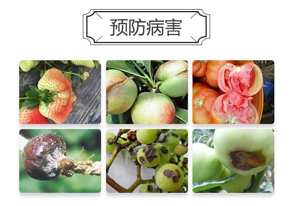 超能钙-生沃土-新博农业_03