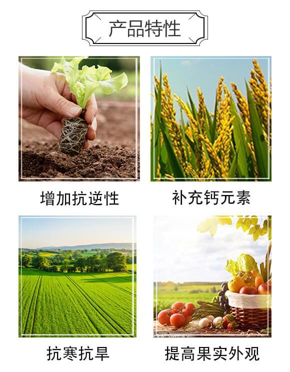 超能钙-生沃土-新博农业_02