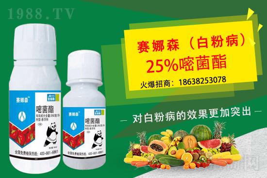 肟菌戊唑醇杀菌剂价格2021.3.10