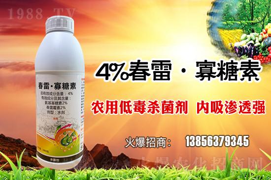 水稻稻瘟病怎么发生的?常见类型有哪些?水稻稻瘟病该怎么防治?