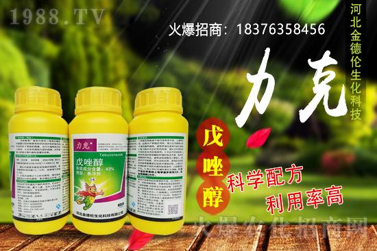 水稻稻瘟病