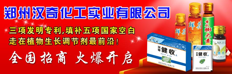 郑州汉奇化工实业有限公司