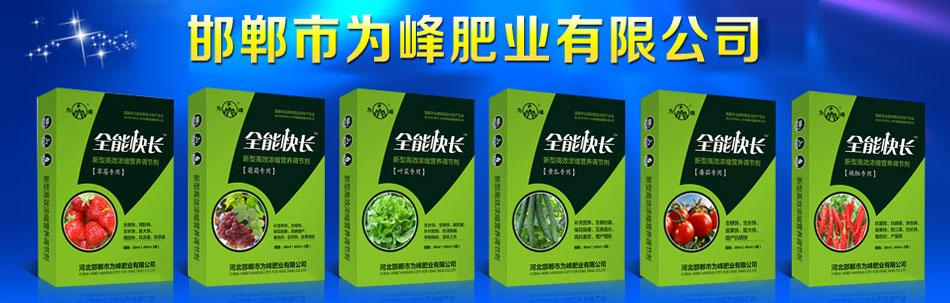 河北邯鄲市為峰肥業有限公司