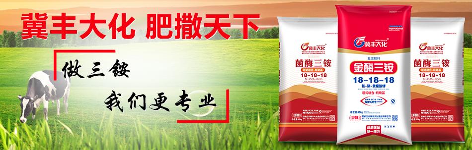 石家庄市冀丰大化肥业有限公司