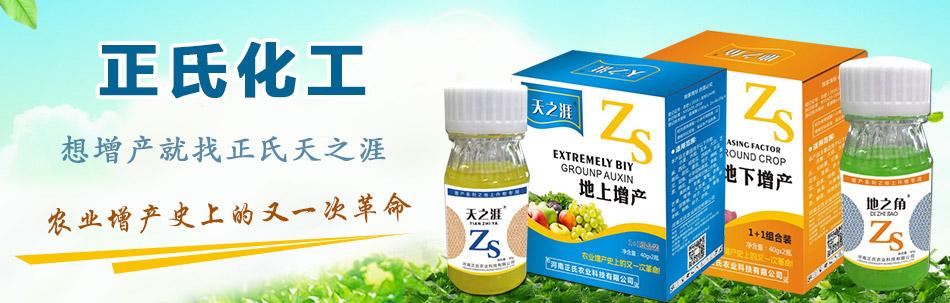 河南正氏农业科技有限公司