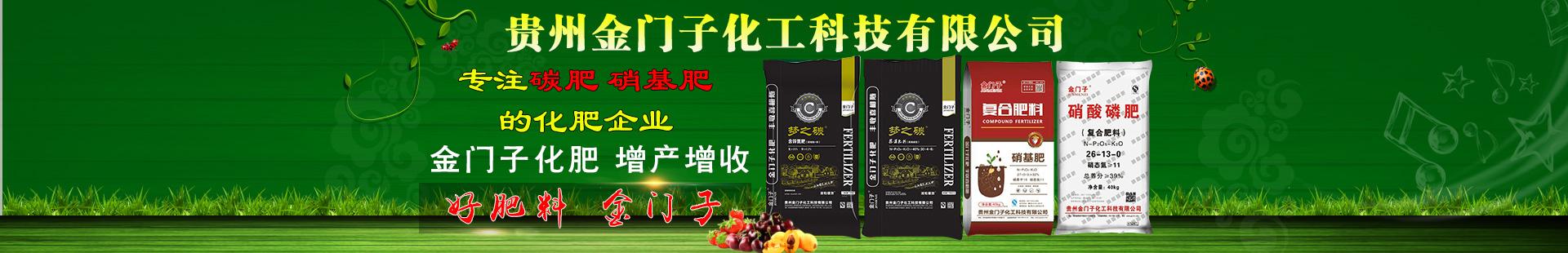 贵州金门子化工科技有限公司