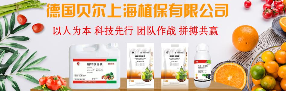 德国贝尔上海植保有限公司