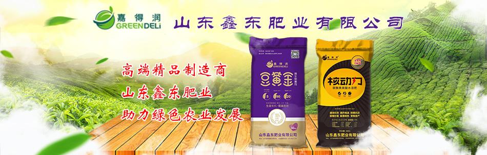山東鑫東肥業有限公司