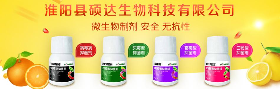 淮陽縣碩達生物科技有限公司