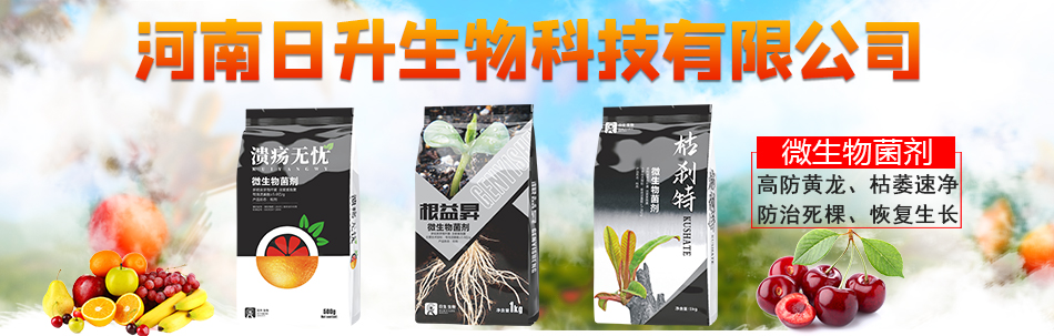 河南日升生物科技有限公司