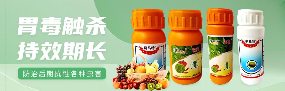 石家庄绿蜻蜓生物科技有限公司