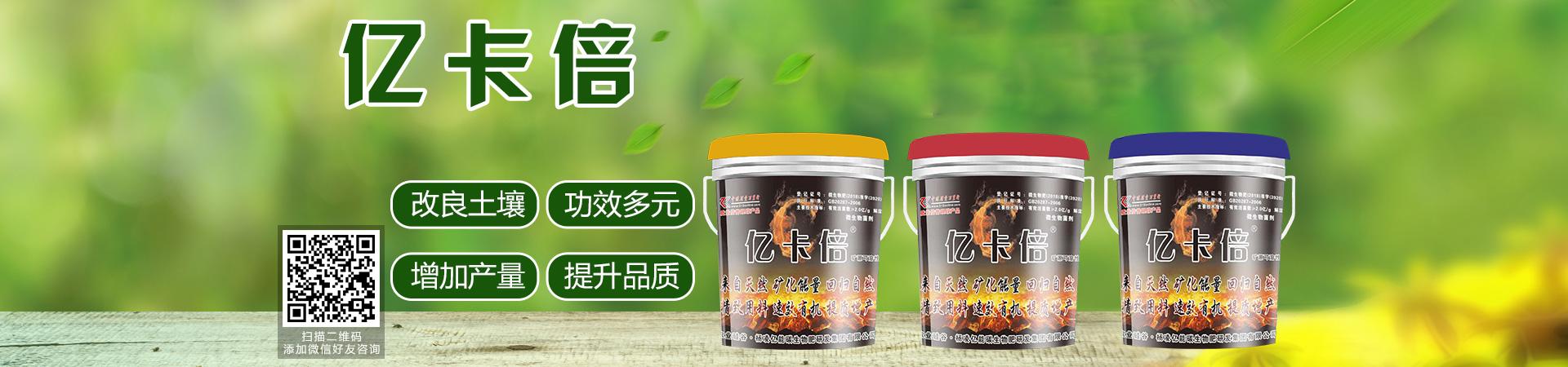 杨凌亿能碳生物肥研发集团有限公司