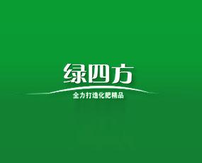 山东寿光绿四方化工有限公司